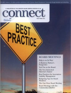 CAI GRIE Connect Issue 3 2013 - Yay I'm on the Board